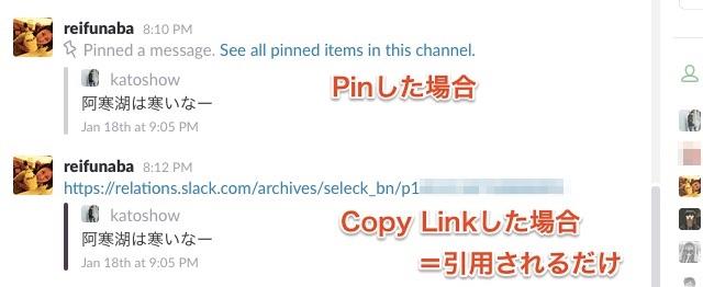 Slack Pin